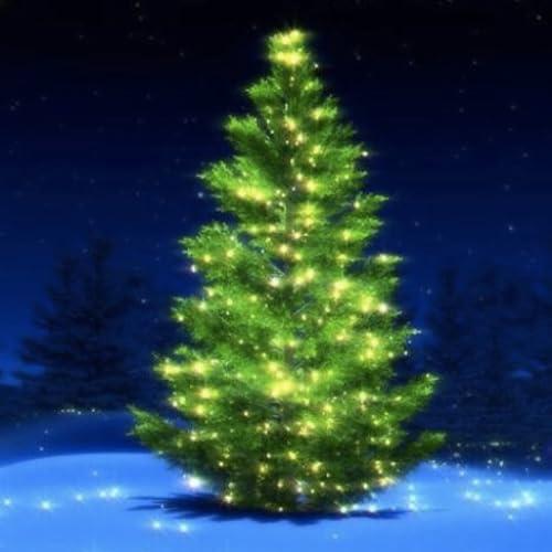 Weihnachtsbaum-Musik Playlist