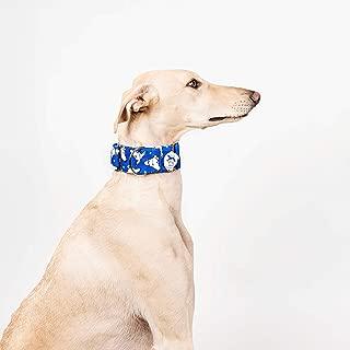 Collar para perros Martingale Caralapiz azul - El galgo azul