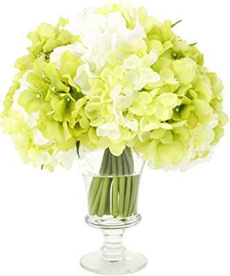 Creative Displays Light Green and Cream Hydrangea Bouquet in Clear Pedestal Glass Vase with Acrylic Water