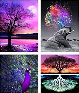 Cskunxia 4 Pack Diamond Painting Kits for Adults DIY Diamond Art Painting Full Drill Diamond Art Kits Paint by Numbers for Home Wall Decor, 12 x 16 Inch and 12 x 12 Inch Without Frame