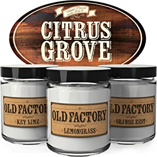 Old Factory Scented Candles - Citrus Grove - Set of 3: Key Lime, Lemongrass, and Orange Zest - 3 x 4-Ounce Soy Candles - Each Votive Candle is Handmade in the USA with only the Best Fragrance Oils