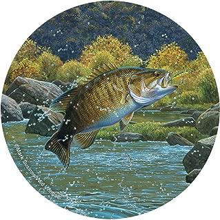 Thirstystone Stoneware Coaster Set, Bass