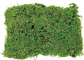 GLOREX Mousse en sachet 50g, vert, 20x 14x 5cm