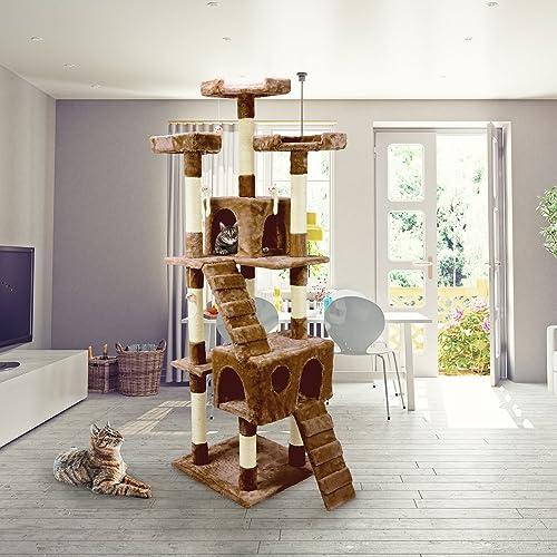 Giochi Per Gatti In Casa Amazonit