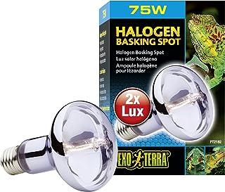 Exo Terra Sun-Glo Daylight Halogen Lamp, 75-Watt