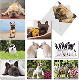 The Best Card Company - 10 Adorable Blank Dog Cards (4 x 5.12 Inch) - Pet Dog Breed Assortment, Boxed - Beautiful Bulldogs...