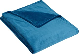 Pinzon Velvet Plush Blanket, Twin, Teal