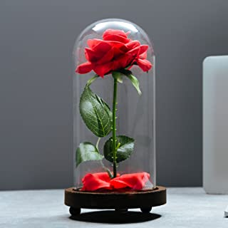 Best glass in tables Reviews