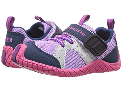 Tsukihoshi Kids Marina (Toddler/Little Kid) (Lavender/Navy) Girls Shoes
