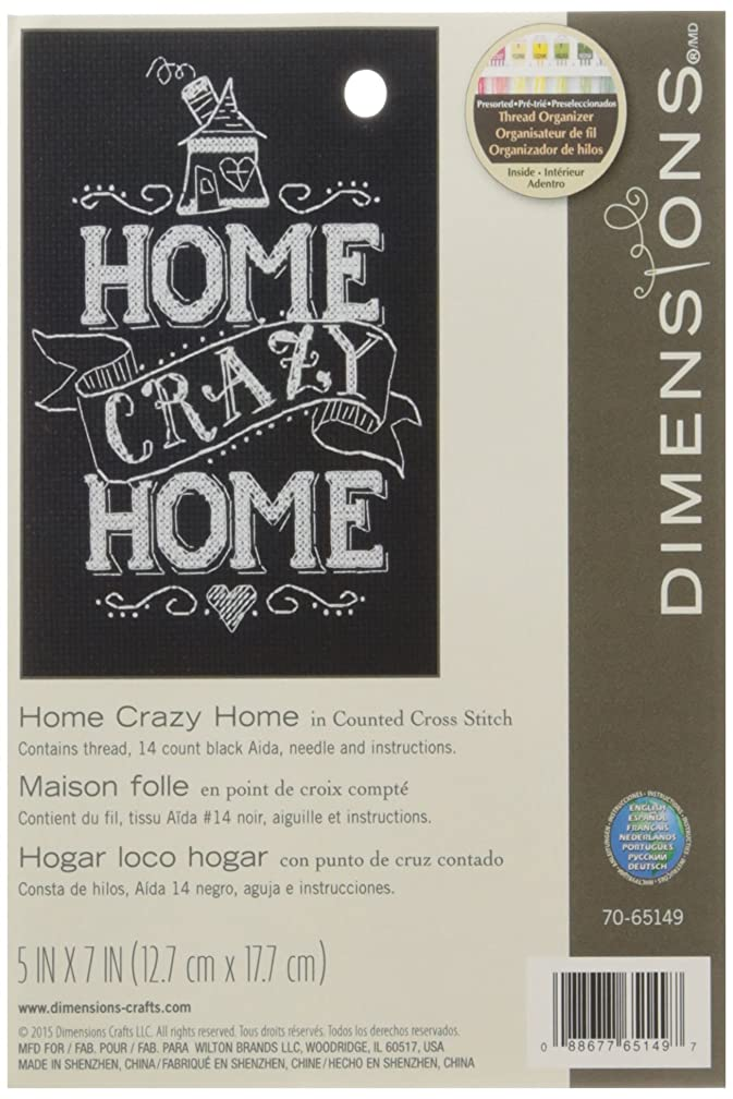 Dimensions 14 Count Home Crazy Home Mini Counted Cross Stitch Kit, 5