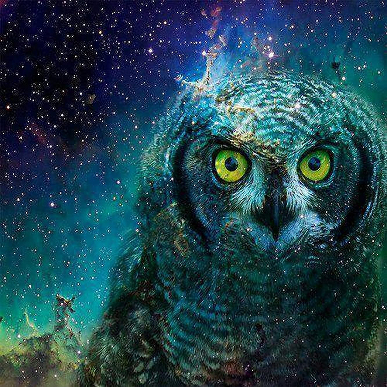 Orsit DIY 5D Diamond Painting Kit, Full Diamond Embroidery Cross Stitch Arts Craft Supply for Home Wall Decor 14X14 inches,owl