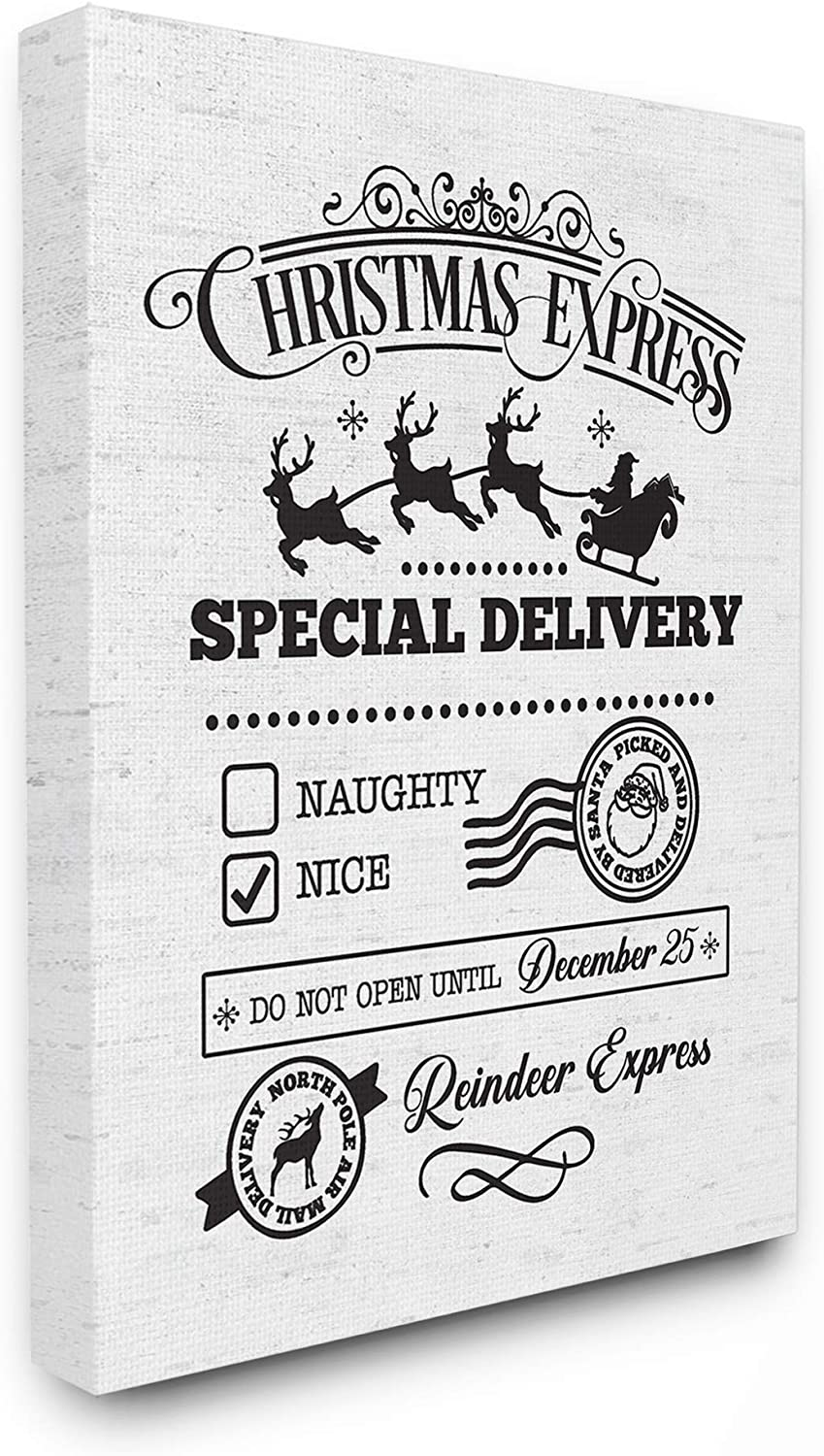 Stupell Industries Home Holiday Christmas Express Package Special Delivery Typography Stretched Canvas Wall Art, Multicolor