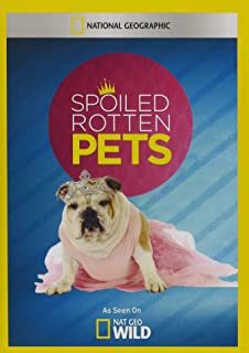 Best spoiled rotten pets com Reviews