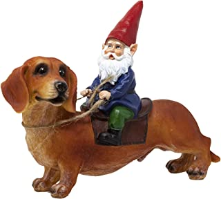 Best Funny Guy Mugs Gnome and a Dachshund Garden Gnome Statue- Indoor/Outdoor Garden Gnome Sculpture for Patio, Yard or Lawn Review