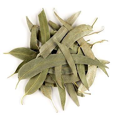 Eucalipto Hoja Suelta Infusión Orgánico - Suave Y Balsámico Para La Garganta - Eucalyptus Bio Eucaliptus 100g