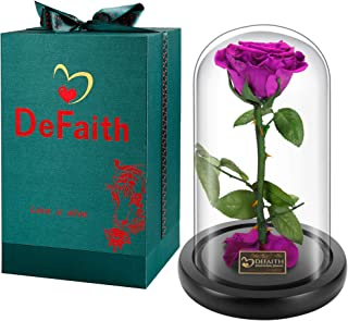 DEFAITH Real Rose 9'' Beauty and The Beast Enchanted Rose in Glass Gift for Her Valentines Day Anniversary Birthday Mother Day Christmas – Purple, 9