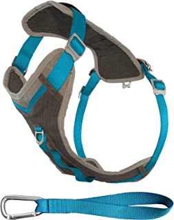Kurgo Dog Harness for Large, Medium, & Small Active Dogs | Pet Hiking Harness for Running & Walking | Everyday Harnesses for Pets | Reflective | Journey Adventure & Air | Black, Blue, Red, & Coral