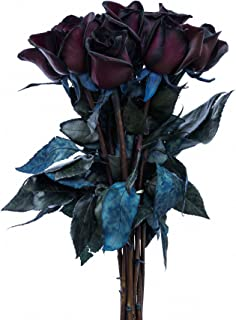 Black Roses Bouquet by Flower Explosion | Real Fresh Tinted Black Roses - 12 Stems