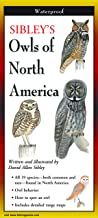 Sibley's Owls of North America (Foldingguides)