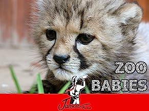 Zoo In Australia