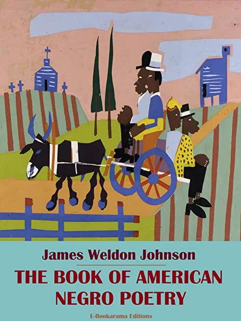 The Book of American Negro Poetry (English Edition)