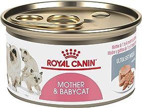Royal Canin Feline تغذیه بهداشتی مادر و غذای کنسرو گربه Babycat
