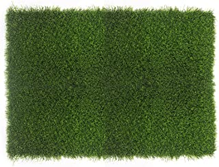 Fasmov Artificial Grass Doormat Multi Purpose Arificial Grass Door Mat, 18
