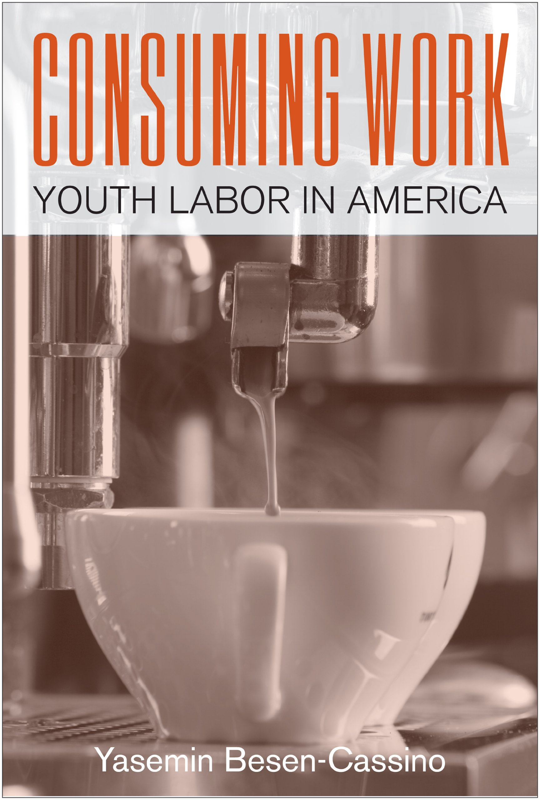 Consuming Work: Youth Labor in America