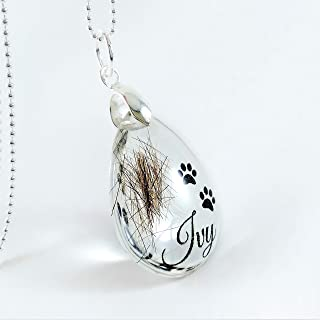 Memorial Hair Locket Keepsake with Paw Prints and Name, Pet Loss Gift Jewelry, Horse Dog Cat Fur Pendant Necklace