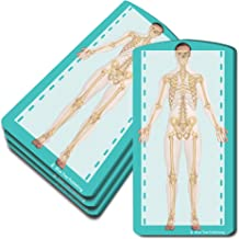 Skeleton Sticky Notes, 4 Packs-100 Sheets Per Pack