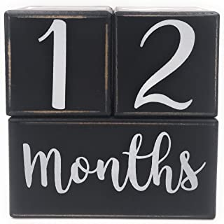 Baby Milestone Blocks, Baby Monthly Milestone Blocks, Baby Age Months Wood Photo Props, Wooden Number Month Block for Babies Pictures, Gender Neutral Boy or Girl Shower Gift, Infant Milestones
