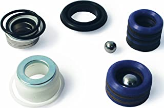 Graco 244194 Pump Repair Packing and Valves Kit for Airless Paint Spray Guns