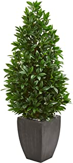 Nearly Natural 56-in. Bay Leaf Cone Topiary Artificial UV Resistant in Black Planter (Indoor/Outdoor) Silk Trees Green
