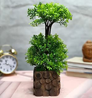 Litleo Great for Home Or Office Decoration or Birthday Gift, Table Top Bonsai Artificial Plant with Wooden Pot Bonsai Arti...