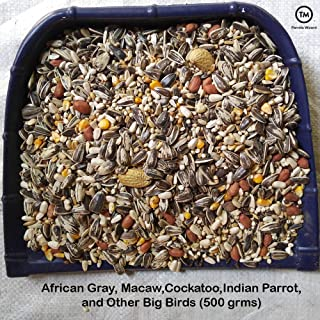 Parrots Wizard Big Parrot Food 31 Types of Seed Mix for African Gray; Macaw;Cockatoo;Indian Parrot;and Other Big Birds (500 grms)