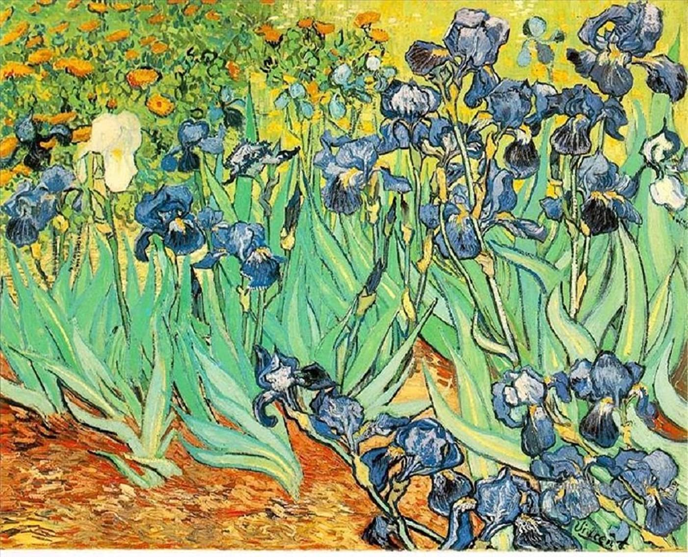 Colour Talk Diy oil painting, paint by number kit- worldwide famous oil painting Irises by Van Gogh 1620 inch.