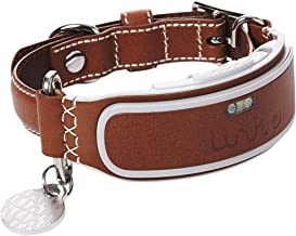 Link AKC Smart Dog Collar with GPS Tracker & Activity Monitor (Leather or Sport)