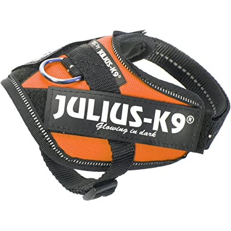 Julius K9 16idc Or B1 Idc Powerharness Size Baby 1 Orange Pet Halter Harnesses Pet Supplies