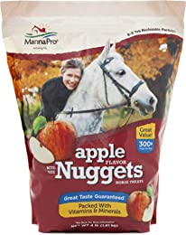 Best treats for horses