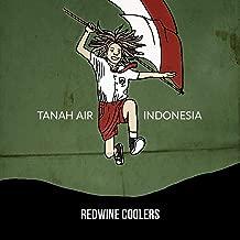 Best reggae indonesia mp3 Reviews