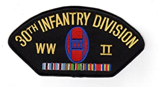 30th division patch