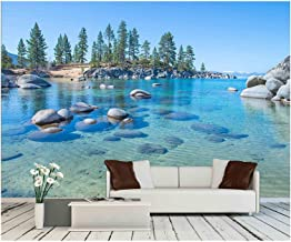 wall26 - Beautiful Blue Clear Water on The Shore of The Lake Tahoe - Removable Wall Mural | Self-Adhesive Large Wallpaper - 66x96 inches