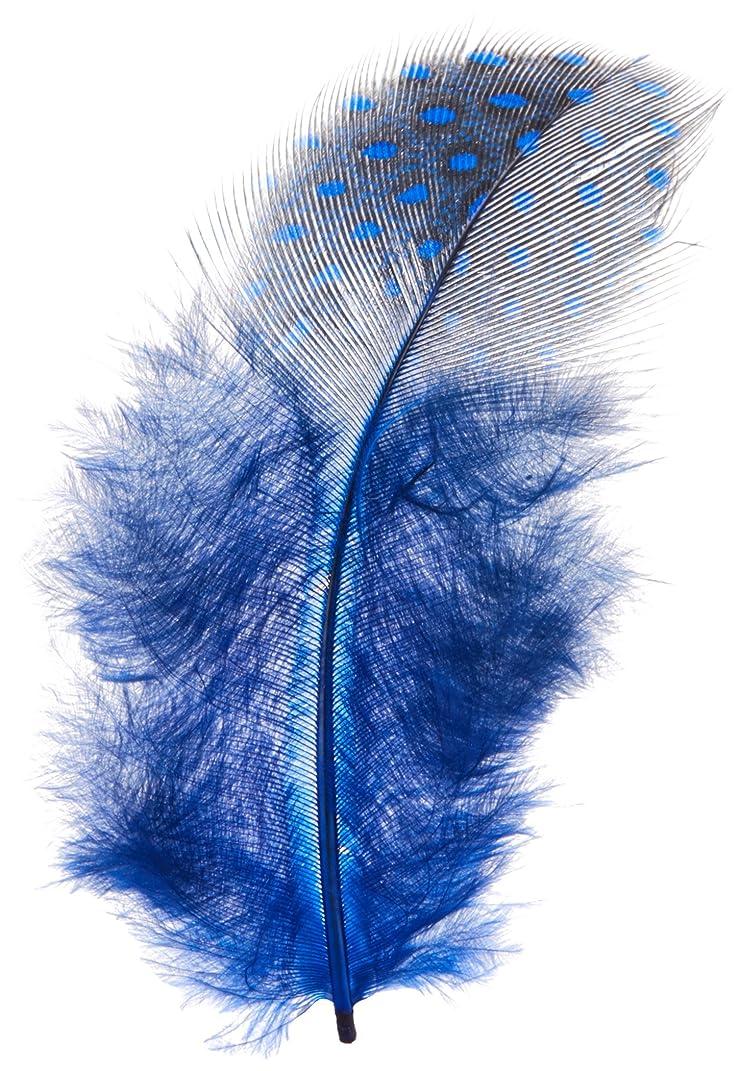 鷲深遠入る天然フェザー ブルー