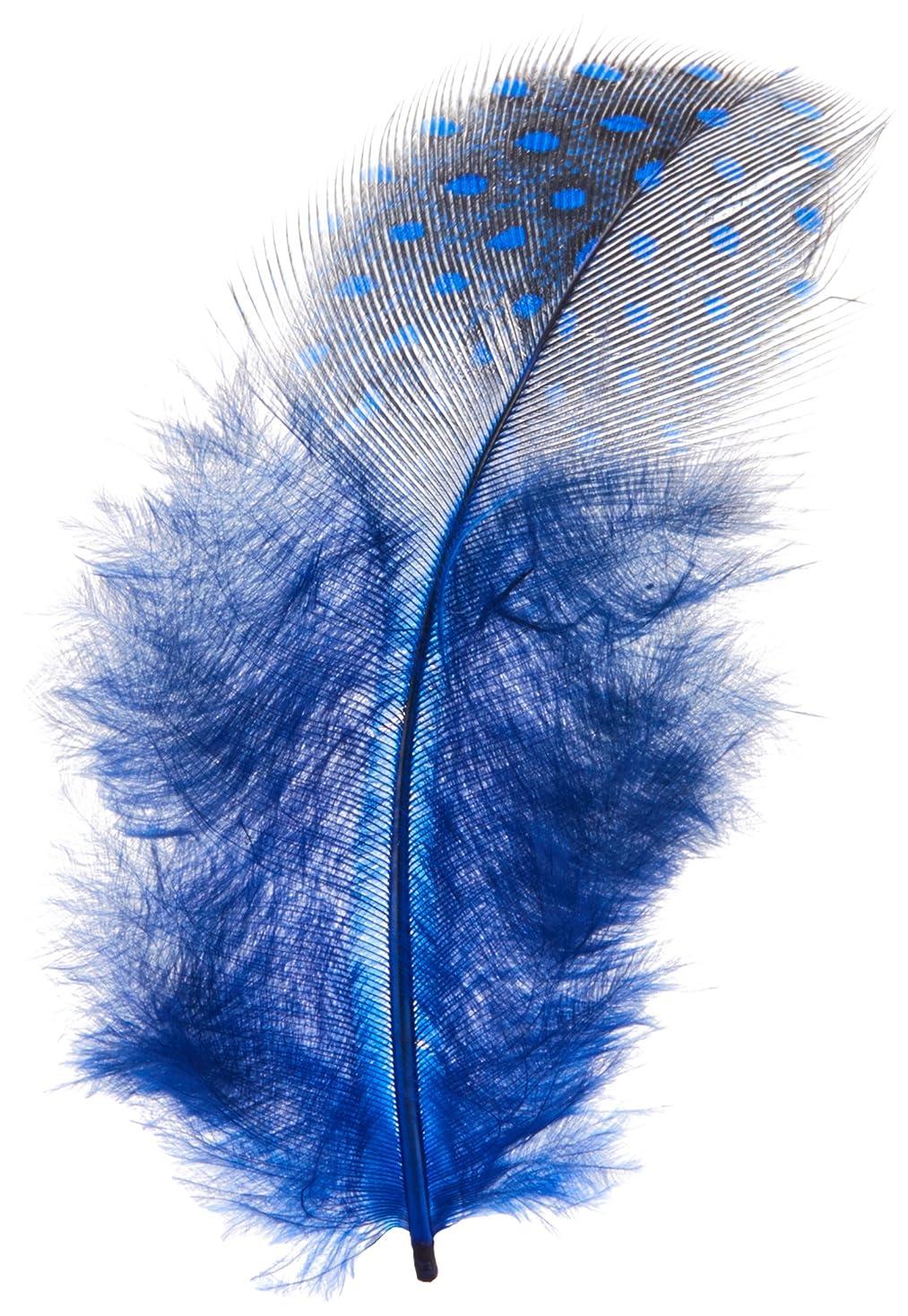 鷲リーチルート天然フェザー ブルー