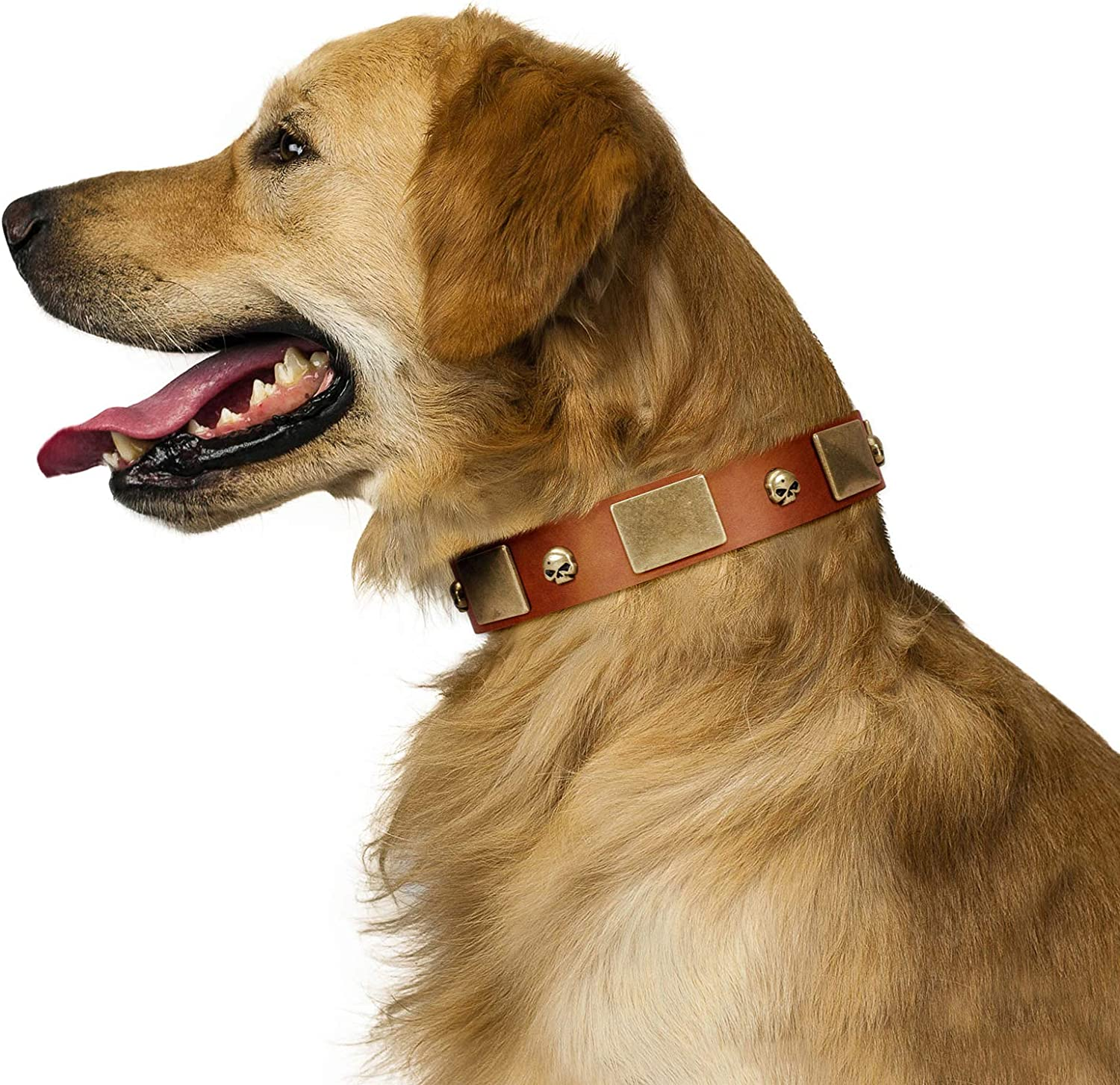 FDT Artisan 28 inch Mutt The Daredevil Tan Leather Dog Collar with Two Rows of Studs  Exclusive Handcrafted Item  1 1 2 inch (40 cm) Wide  Gift Box Included