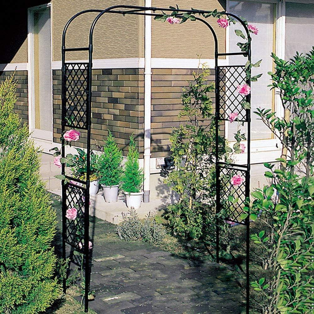 Garden Arch Pergola Climbing Plant & Roses Support Trellis ...