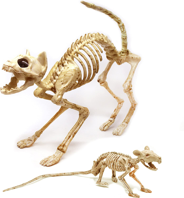 Skeleton Cat and Rat Skeleton for Halloween Decorations, Skeleton Animal Yard Decor and Reaper Bones Animals