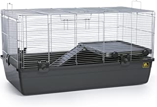 Best fancy mouse habitat Reviews