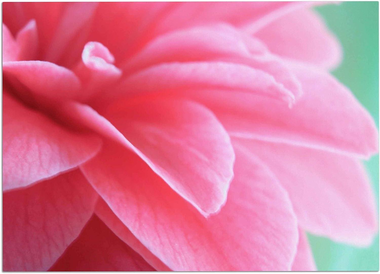 KESS InHouse AC1104ADM02 Alison Coxon Camellia Pink Greeen Dog Place Mat, 24 x15