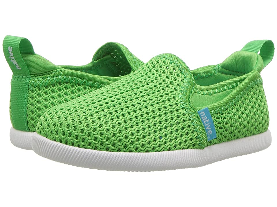 Native Kids Shoes Cruz (Toddler/Little Kid) (Grasshopper Green/Shell White) Kids Shoes